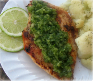 Chicken With Onion Cilantro Relish Hcg Recipe